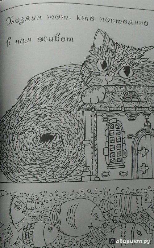 Иллюстрация 14 из 24 для Котомудрости. Раскраска для ...