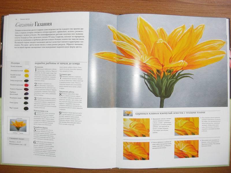 Иллюстрация 17 из 20 для Акриловая живопись. Рисуем цветы - Лекси Санделл   Лабиринт - книги. Источник: Gradara
