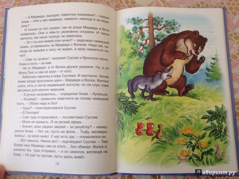 Иллюстрация 4 из 22 для Солнечный зайчик Хомы и Суслика - Альберт Иванов | Лабиринт - книги. Источник: ХК