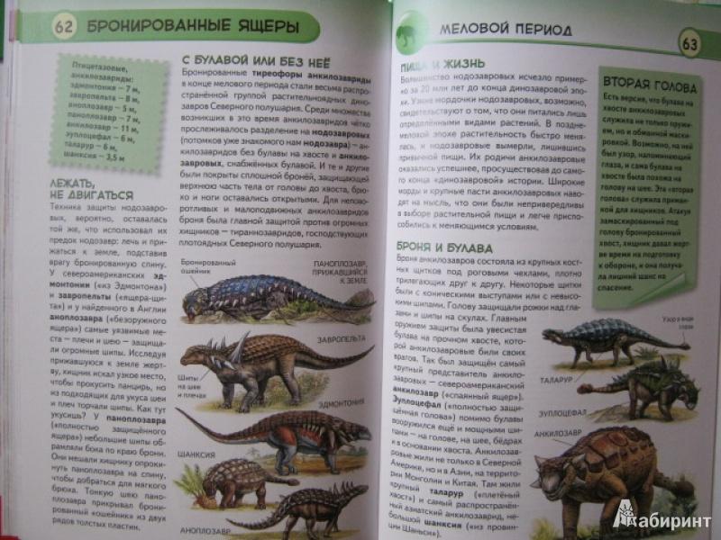 Иллюстрация 11 из 33 для Динозавры. Ящеры мезозойской эры - Юлия Школьник | Лабиринт - книги. Источник: Евгения39
