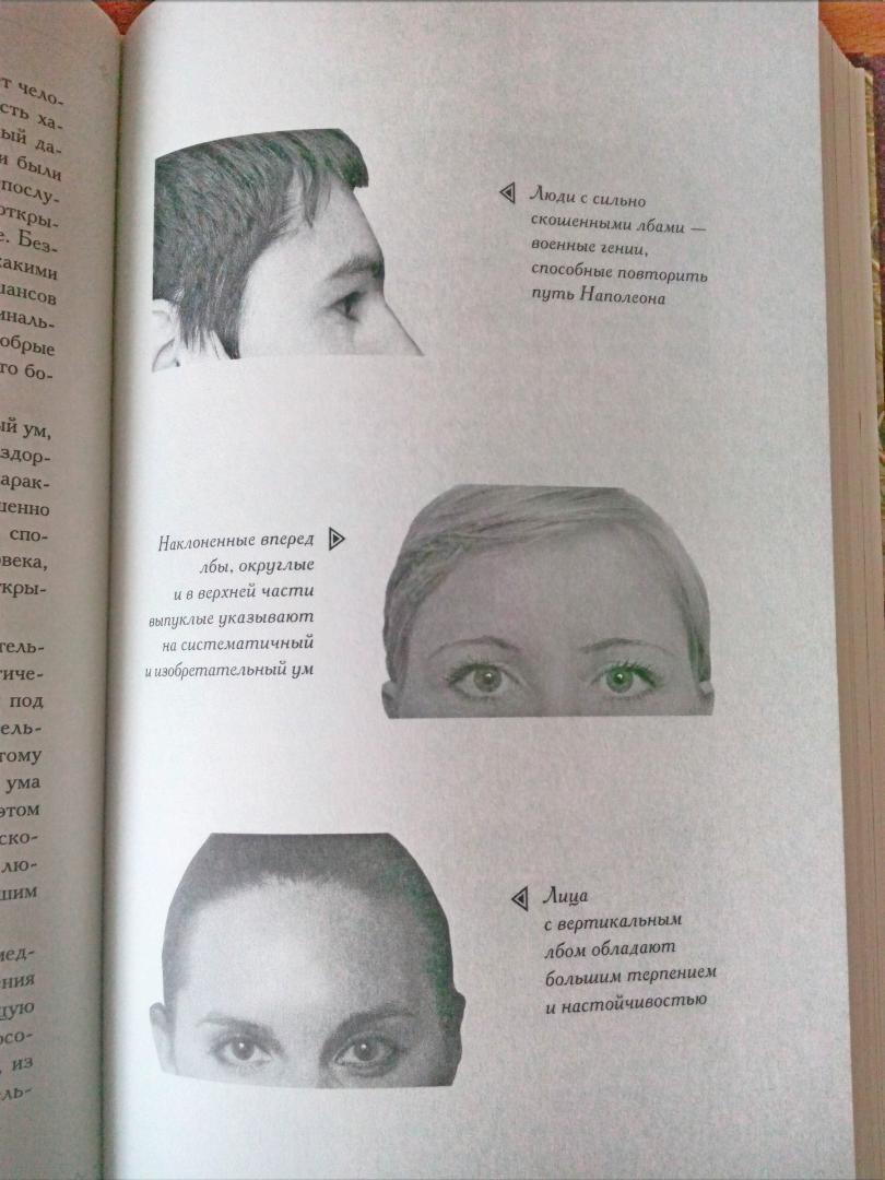 физиогномика лица в картинках обучение лоб
