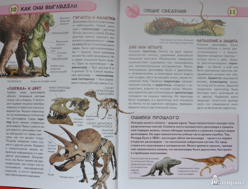 Иллюстрация 12 из 34 для Динозавры. Ящеры мезозойской эры - Юлия Школьник   Лабиринт - книги. Источник: NDusha
