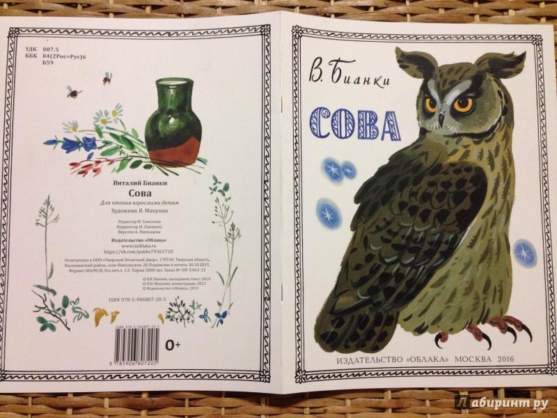 Иллюстрация 19 из 36 для Сова - Виталий Бианки | Лабиринт - книги. Источник: Транжира