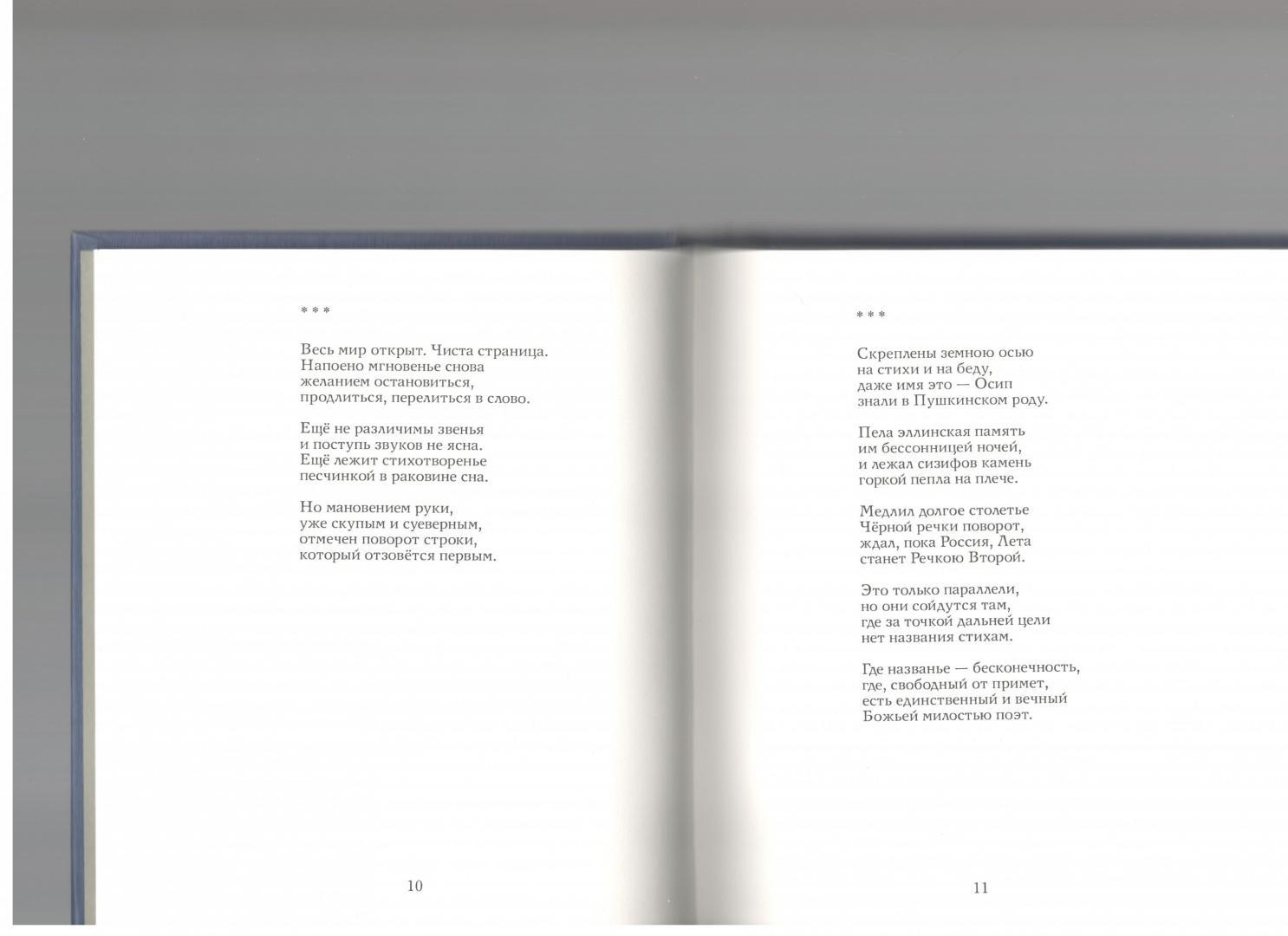 Иллюстрация 1 из 7 для Стрела в полёте: Стихи - Марина Косталевская | Лабиринт - книги. Источник: neludimka