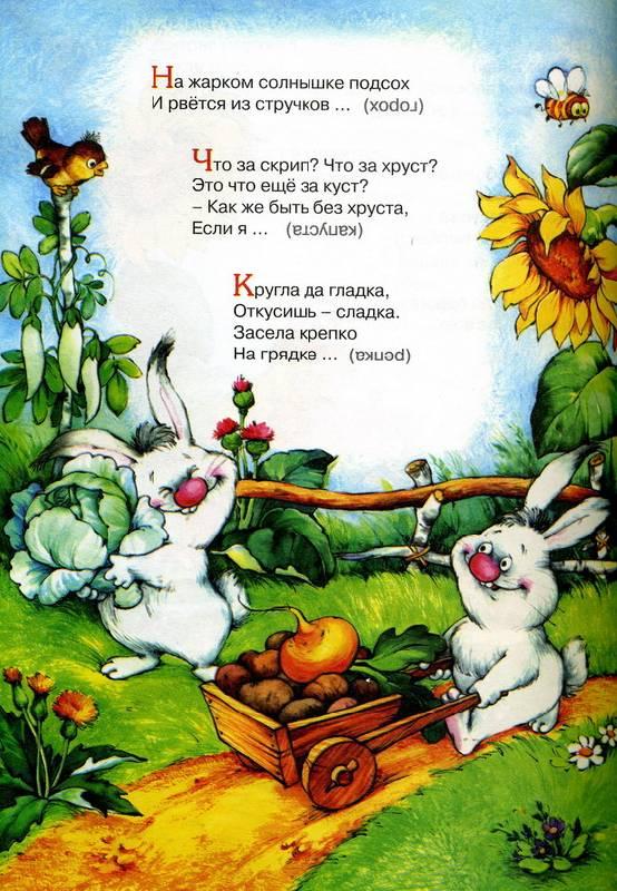 Иллюстрация 1 из 2 для Загадки с рифмами - Борисов, Коняхин   Лабиринт - книги. Источник: Дерингер  Анна Борисовна
