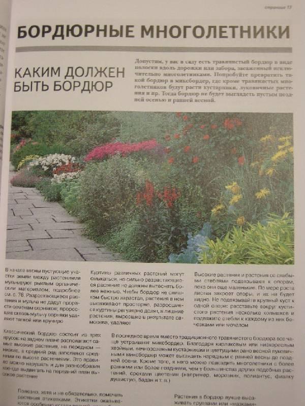 Иллюстрация 5 из 13 для Все о восстановлении и обновлении сада - Дэвид Хессайон | Лабиринт - книги. Источник: Chedi