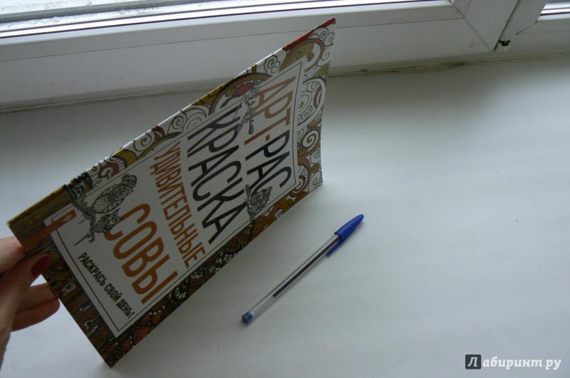 Иллюстрация 13 из 19 для Удивительные совы: книжка ...