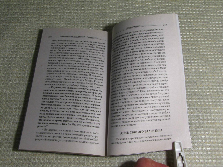 Иллюстрация 22 из 22 для Авва-онлайн. Интернет-записки приходского священника - Алексий Священник | Лабиринт - книги. Источник: leo tolstoy