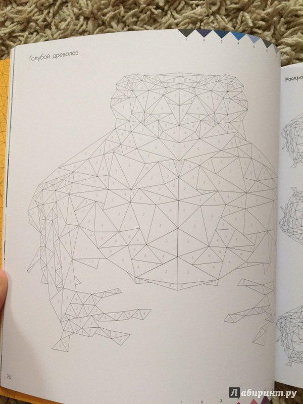 Иллюстрация 9 из 17 для Дикая раскраска   Лабиринт - книги. Источник: Надеждина  Надежда