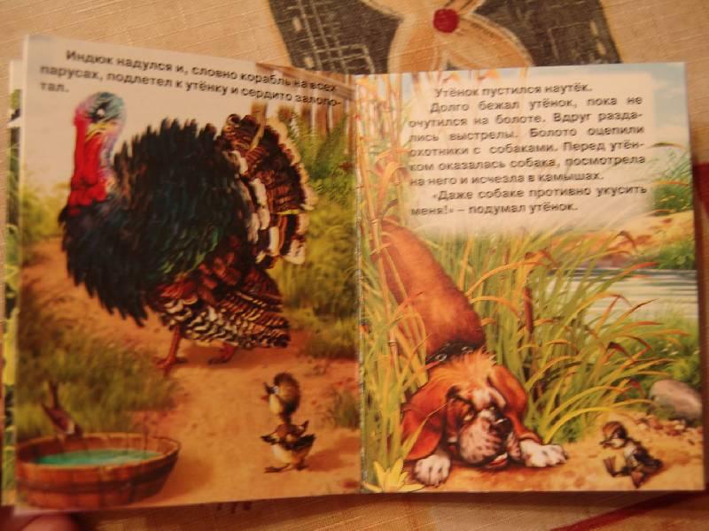 Иллюстрация 1 из 2 для Гадкий утенок - Ханс Андерсен | Лабиринт - книги. Источник: Лаванда