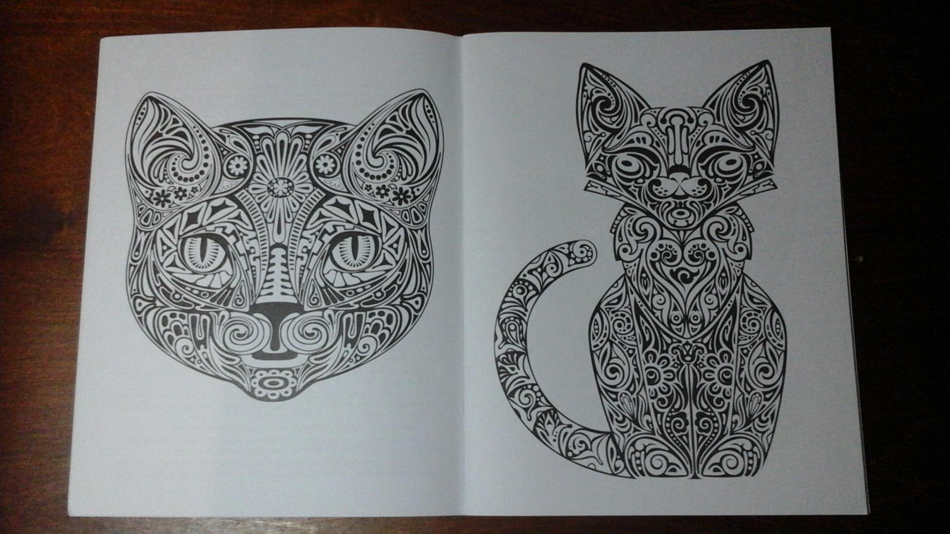 Иллюстрация 3 из 10 для Cats-2. Творческая раскраска ...