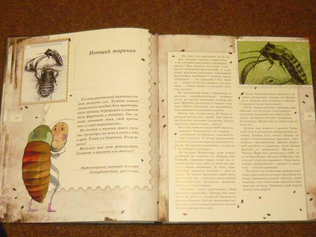 Иллюстрация 58 из 106 для Письма насекомых - Ольга Кувыкина | Лабиринт - книги. Источник: Ромашка:-)