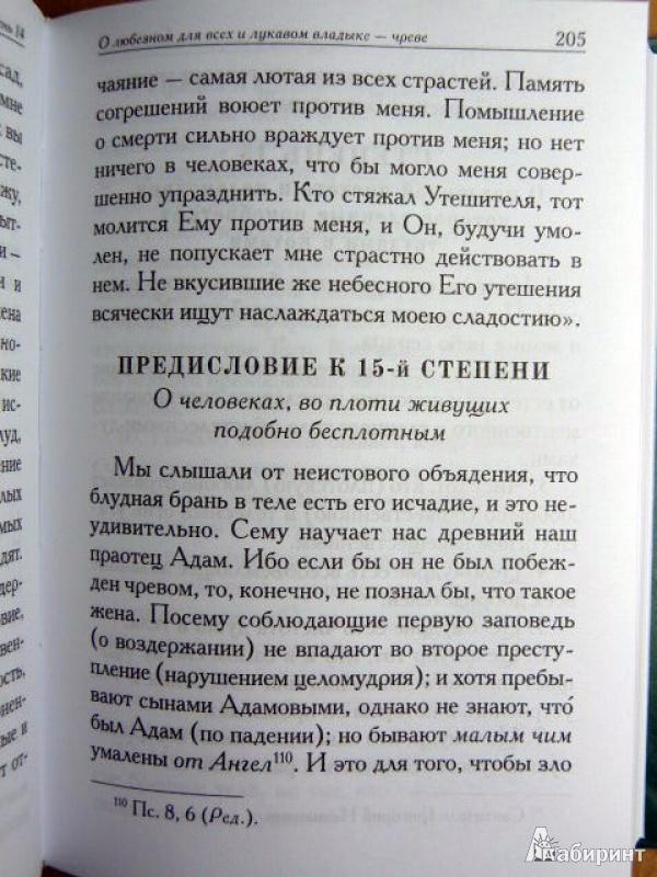 Иллюстрация 11 из 29 для Лествица - Иоанн Преподобный | Лабиринт - книги. Источник: ***Лариса***