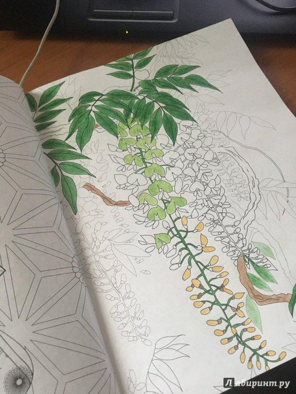 Иллюстрация 3 из 27 для Загадочная Япония. Раскраска ...