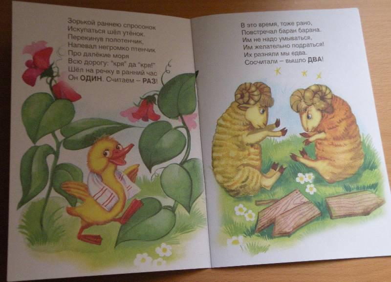 Иллюстрация 1 из 10 для Живая арифметика - Светлана Пшеничных | Лабиринт - книги. Источник: List
