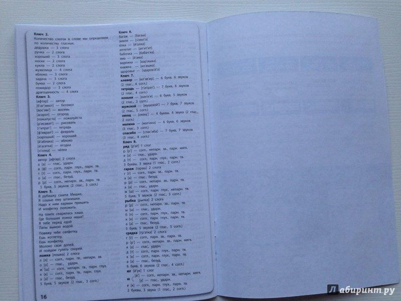 Иллюстрация 6 из 30 для Русский язык. 1-2 классы. Все виды ...