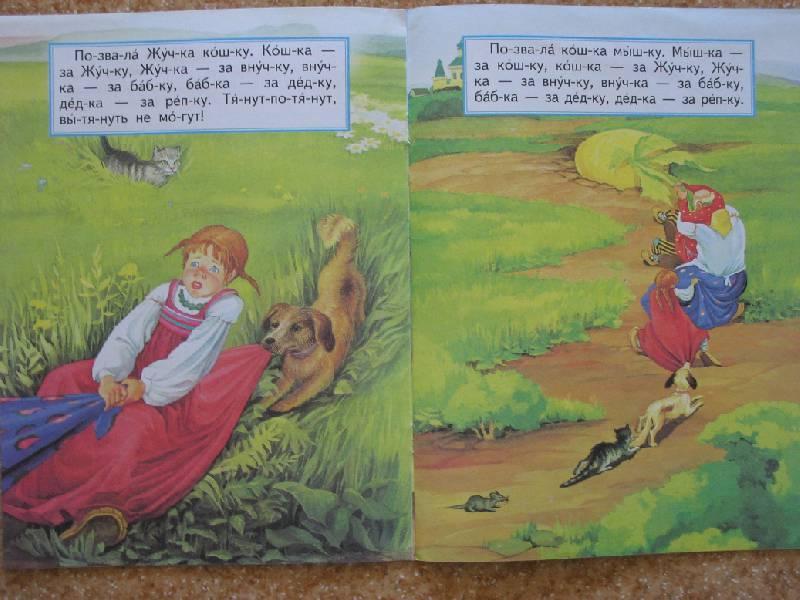 Иллюстрация 5 из 9 для Репка | Лабиринт - книги. Источник: magnolia