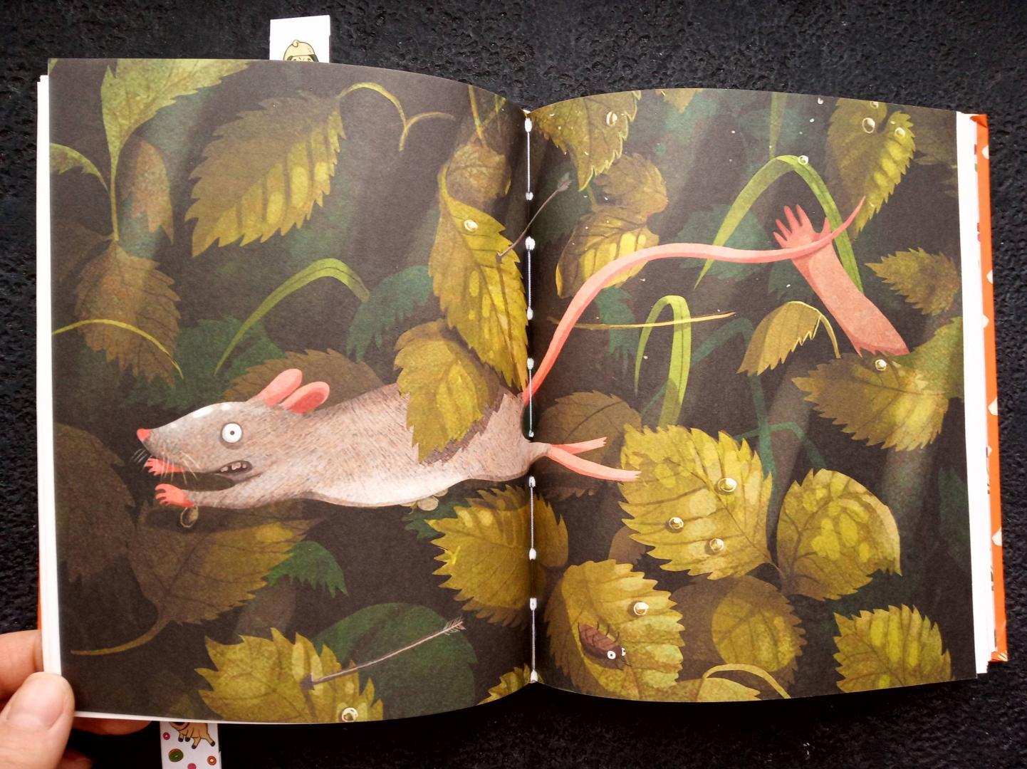Иллюстрация 50 из 56 для Добывайки в поле - Мэри Нортон | Лабиринт - книги. Источник: RockBaby