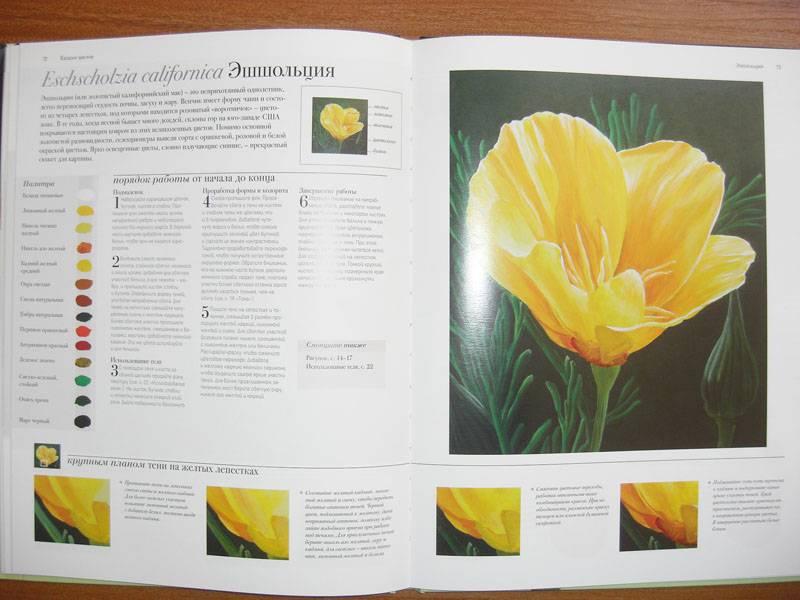 Иллюстрация 16 из 20 для Акриловая живопись. Рисуем цветы - Лекси Санделл | Лабиринт - книги. Источник: Gradara