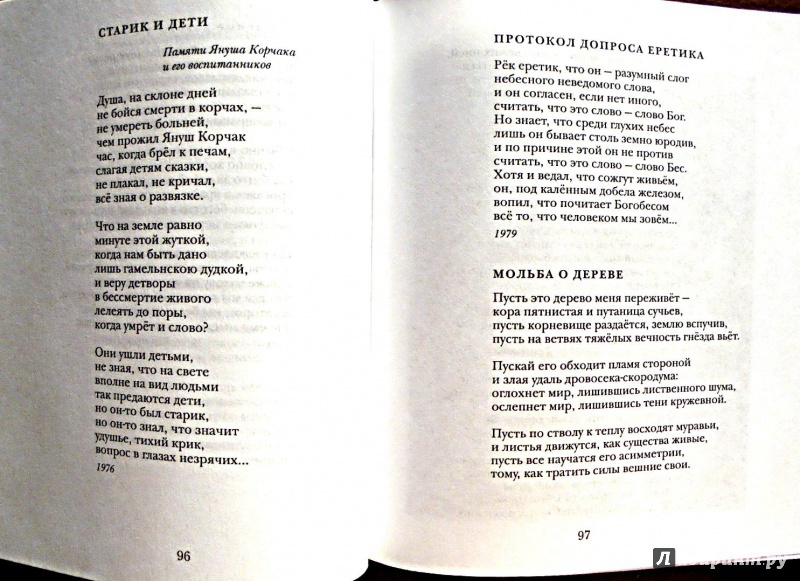 Иллюстрация 6 из 22 для Между Я и Явью: Избранные стихи - Павел Грушко | Лабиринт - книги. Источник: Александр Н.