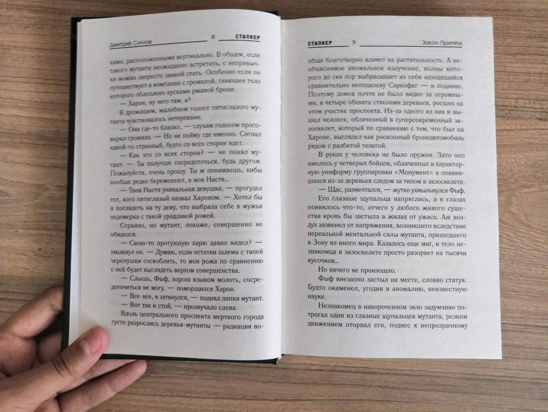 Иллюстрация 28 из 31 для Закон Припяти - Дмитрий Силлов | Лабиринт - книги. Источник: Лабиринт