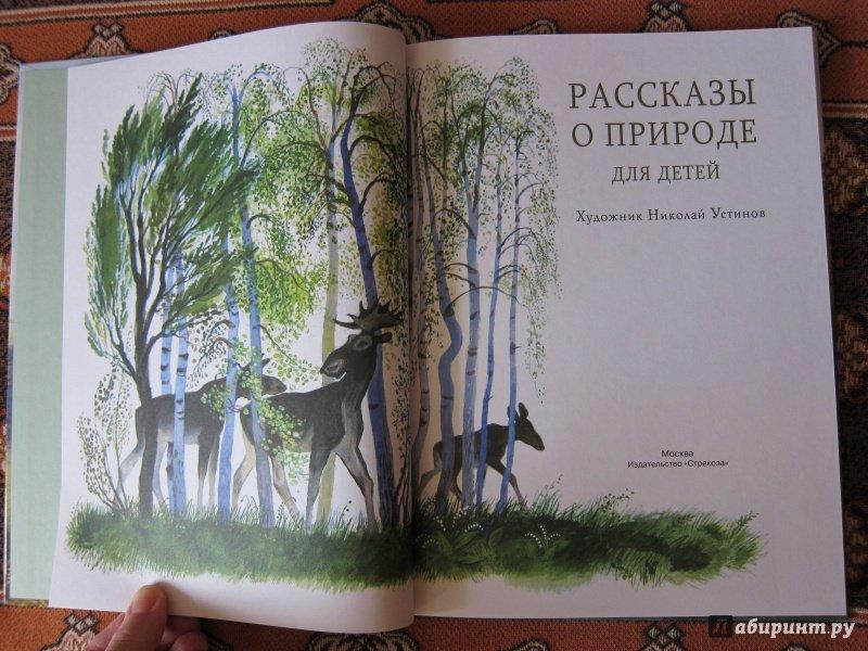 Иллюстрации к рассказам о природе русских писателей