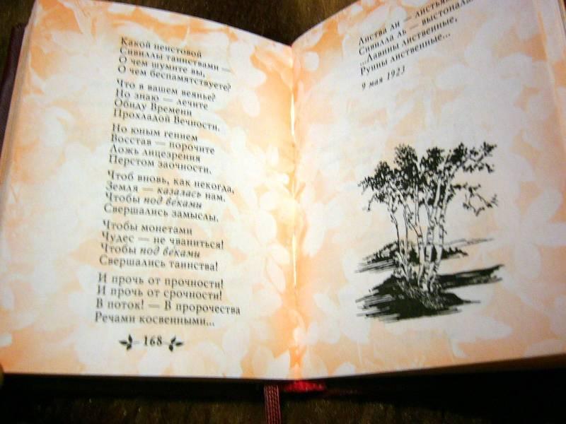 Иллюстрация 7 из 7 для Час души - Марина Цветаева   Лабиринт - книги. Источник: Nika