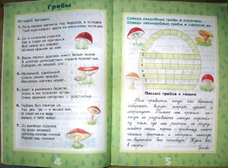 Иллюстрация 14 из 17 для Растения леса - Ольга Тишурина | Лабиринт - книги. Источник: Ирина Викторовна