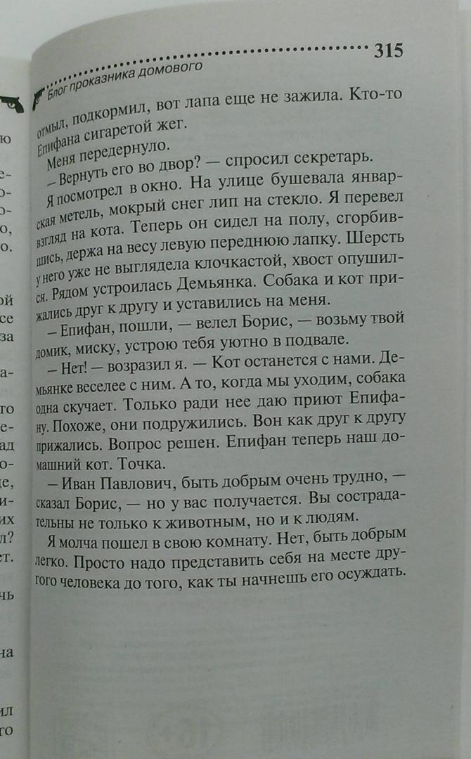 Иллюстрация 16 из 17 для Блог проказника домового - Дарья Донцова | Лабиринт - книги. Источник: Книголюб!