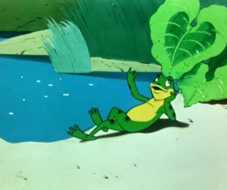 побережье гиф лягушка путешественница глазу