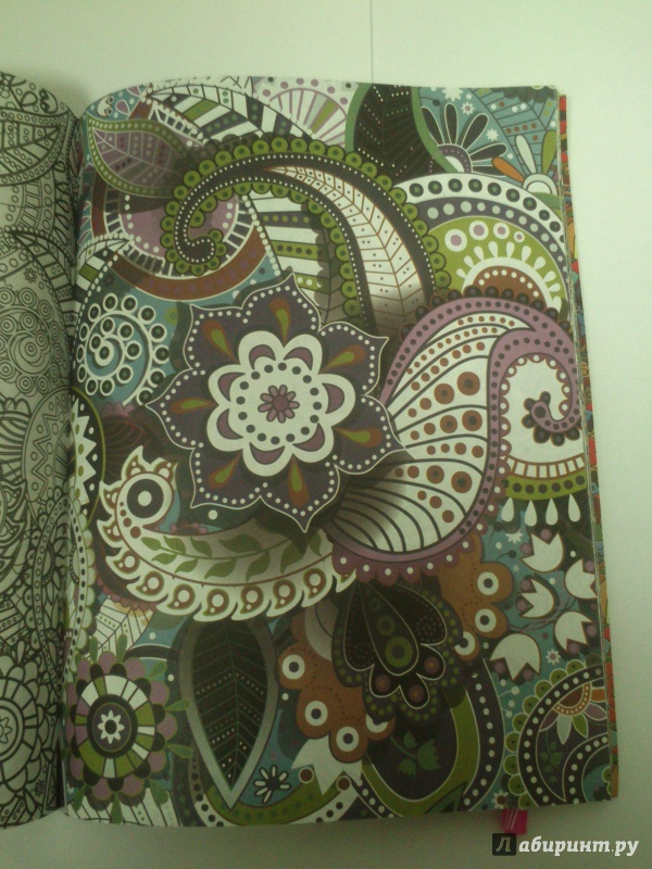 Иллюстрация 8 из 26 для Цветы для счастья. Раскраска для ...