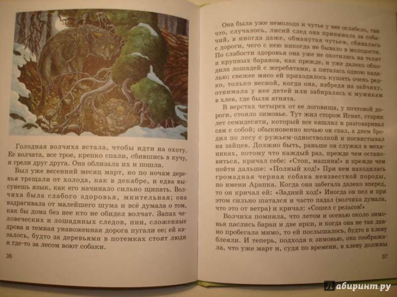 Иллюстрация 7 из 7 для Мой серый друг - Житков, Чехов   Лабиринт - книги. Источник: Сорокина  Лариса
