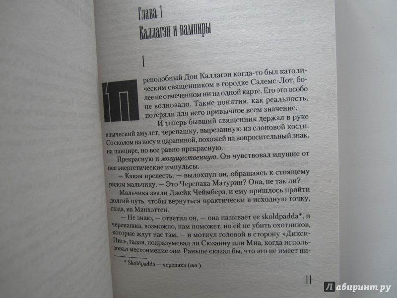 Иллюстрация 28 из 43 для Темная Башня - Стивен Кинг | Лабиринт - книги. Источник: Павел