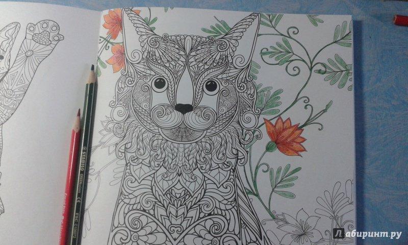 Иллюстрация 7 из 23 для Cats. Творческая раскраска ...