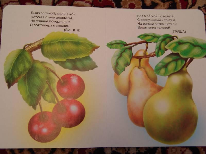 Иллюстрация 1 из 5 для Вкусные загадки | Лабиринт - книги. Источник: Лаванда