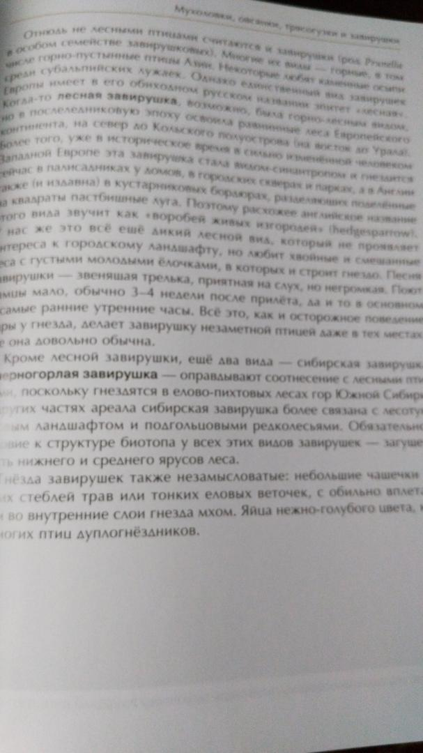 Иллюстрация 10 из 51 для Лесные птицы России - Константин Михайлов   Лабиринт - книги. Источник: Galinka