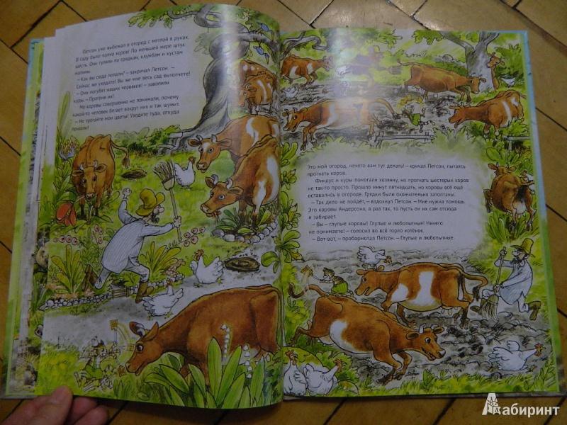 Иллюстрация 36 из 57 для Переполох в огороде - Свен Нурдквист | Лабиринт - книги. Источник: Мама Ольга