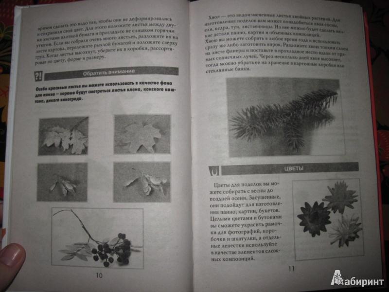 Иллюстрация 5 из 16 для Простые поделки из природных материалов - Светлана Жук | Лабиринт - книги. Источник: товарищ маузер