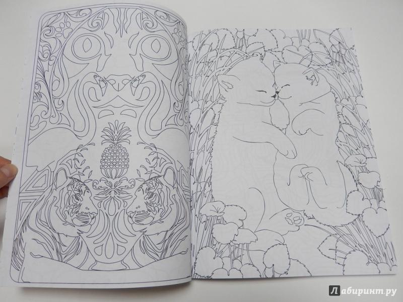Иллюстрация 17 из 54 для Кототерапия. Раскраска-антистресс ...
