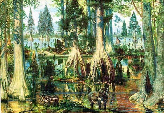 Иллюстрация 5 из 8 для Сенсационная история Земли. Сколько на самом деле лет нашей планете? - Андрей Скляров   Лабиринт - книги. Источник: Maharet