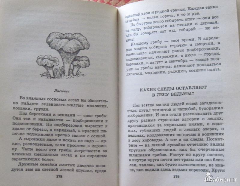 Иллюстрация 3 из 6 для Я познаю мир. Растения - Людмила Багрова | Лабиринт - книги. Источник: Nюша