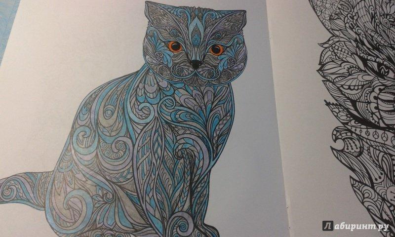 Иллюстрация 3 из 23 для Cats. Творческая раскраска ...