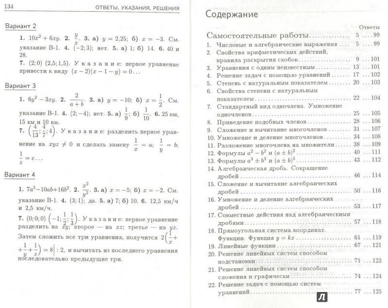 Иллюстрация 1 из 17 для Дидактические материалы по алгебре для 7 класса - Зив, Гольдич   Лабиринт - книги. Источник: Елена Весна