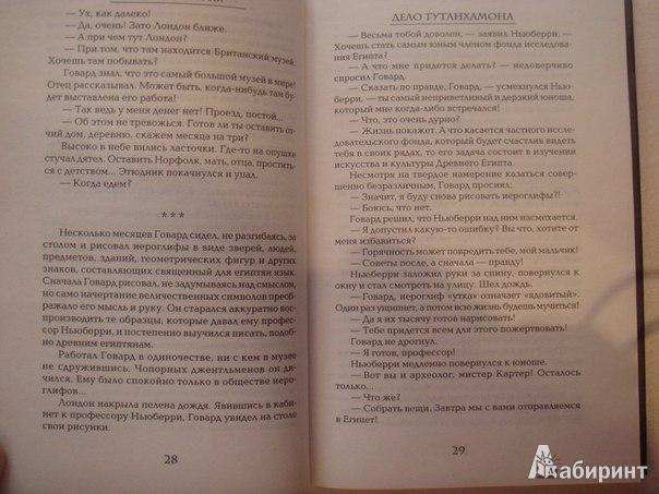Иллюстрация 5 из 5 для Дело Тутанхамона - Кристиан Жак   Лабиринт - книги. Источник: Гунякова  Анна
