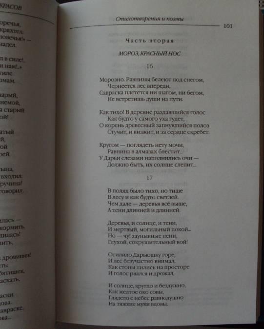 Иллюстрация 18 из 22 для Стихотворения и поэмы. Кому на Руси жить хорошо - Николай Некрасов   Лабиринт - книги. Источник: Кукина  Мария