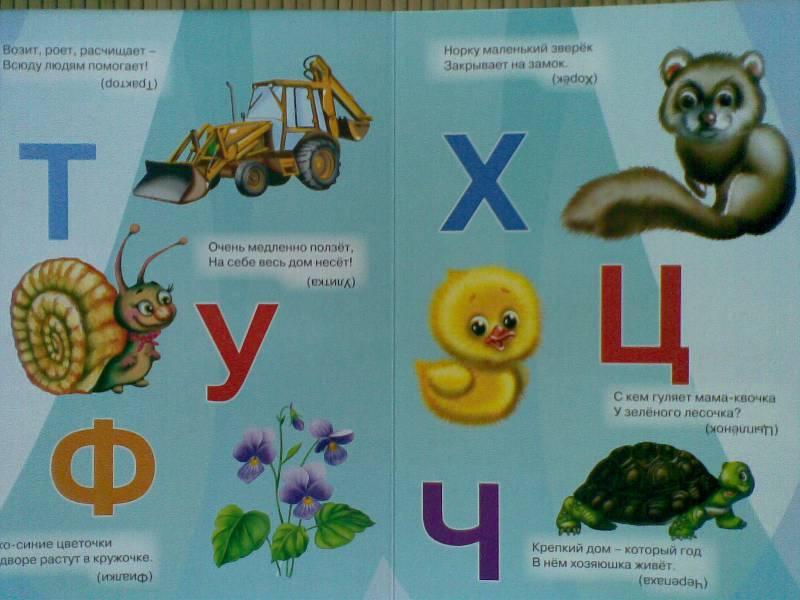 азбука своими руками с картинками и стихами того, как