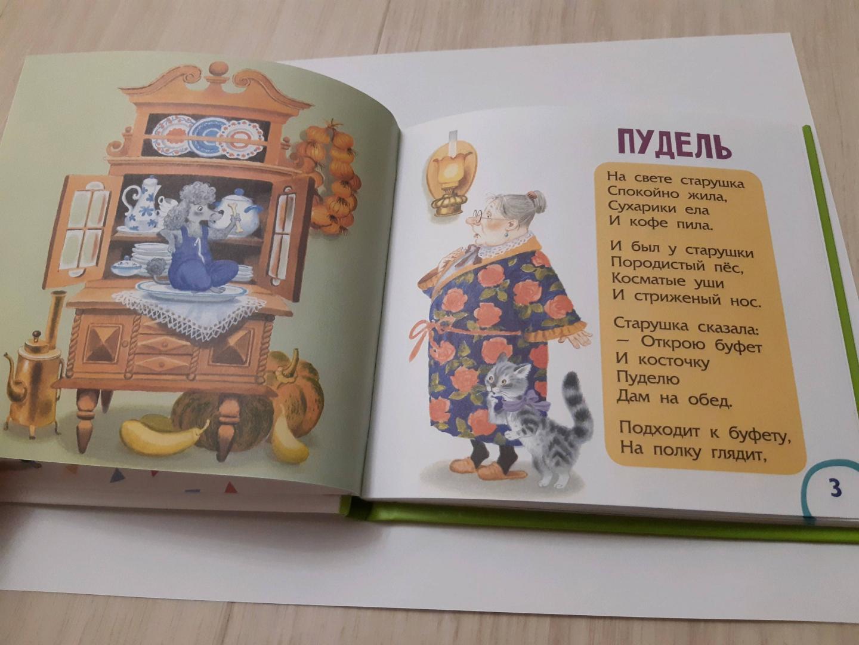 Иллюстрация 4 из 20 для Вот какой рассеянный - Самуил Маршак | Лабиринт - книги. Источник: Наталья