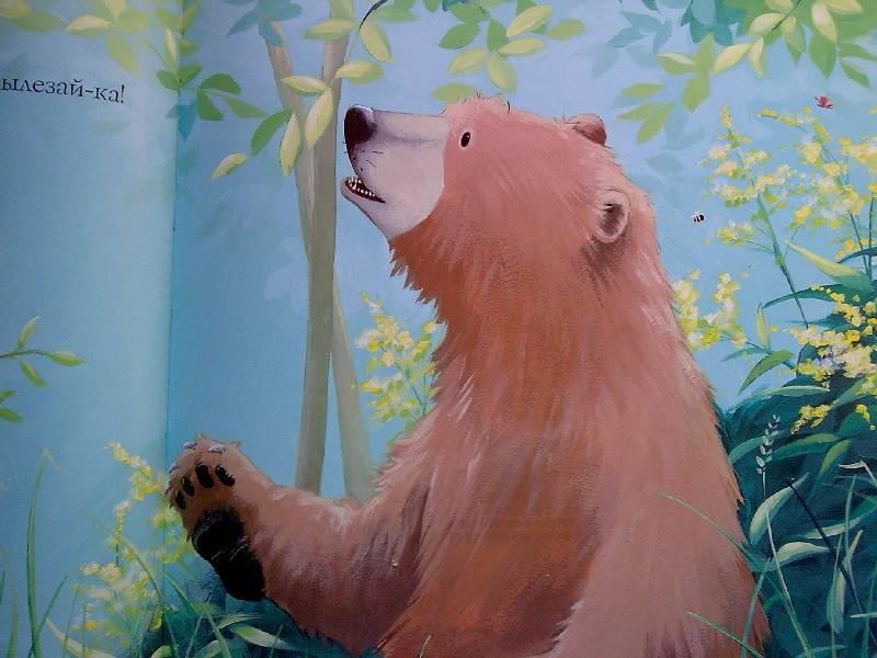Иллюстрация 31 из 33 для Новый друг Медведика - Уилсон, Чапмен | Лабиринт - книги. Источник: Honny