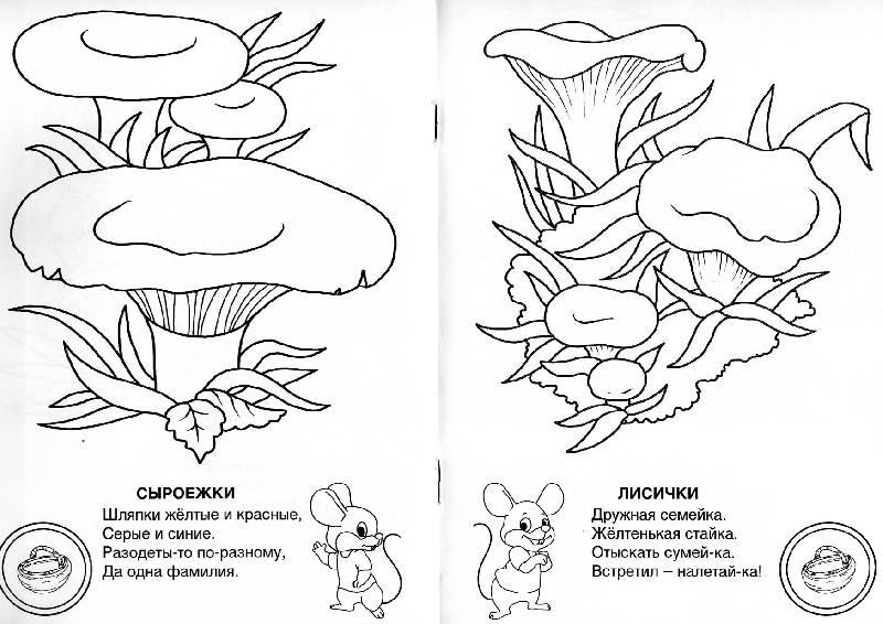 Иллюстрация 4 из 14 для Знаешь ли ты грибы-грибочки ...