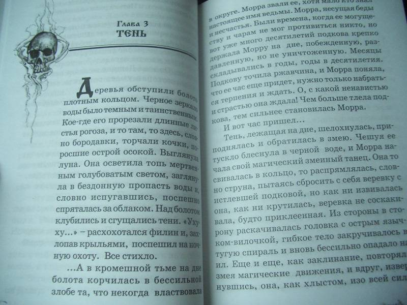 Иллюстрация 2 из 6 для Хрустальный ключ - Тамара Крюкова | Лабиринт - книги. Источник: unnamed